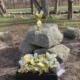 Stemningsbilleder fra påskeløb på Mørke kirkegård 🌈🐣 ... Mon I kan høre klokkerne der kimer, for at markere påsken 💒